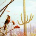 Bird in Diorama